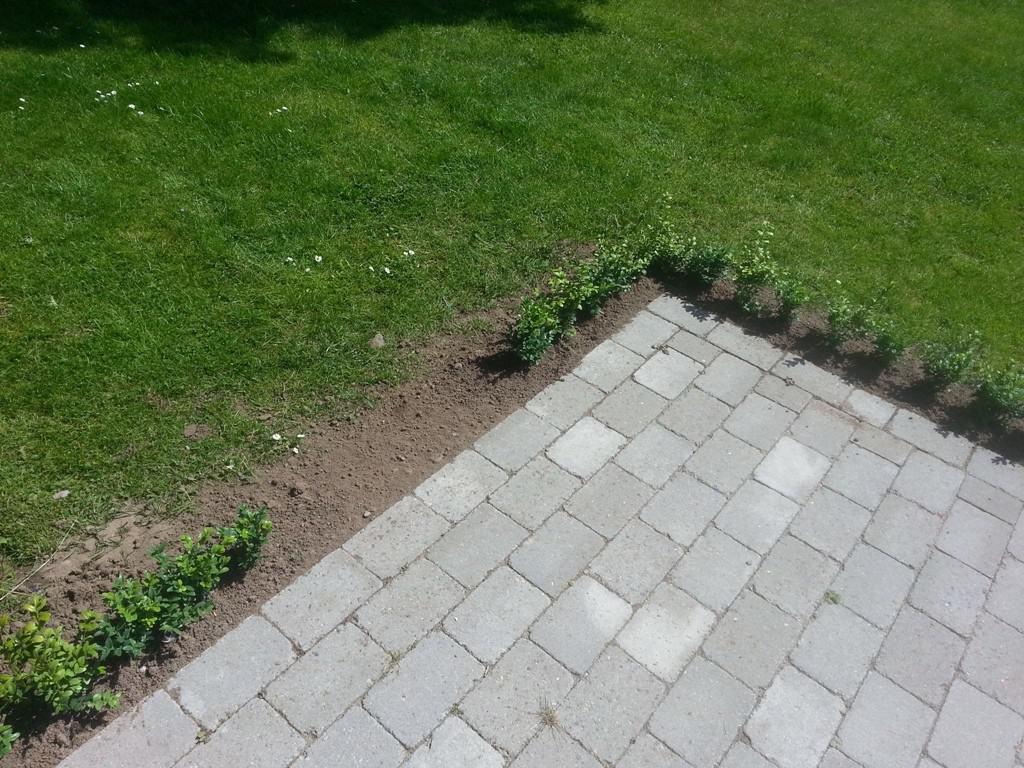 anlægsgartner-havelandskab-vejle-Anlægsgartner i Vejle - Havelandskab med beplantning i Vinding ved Vejle