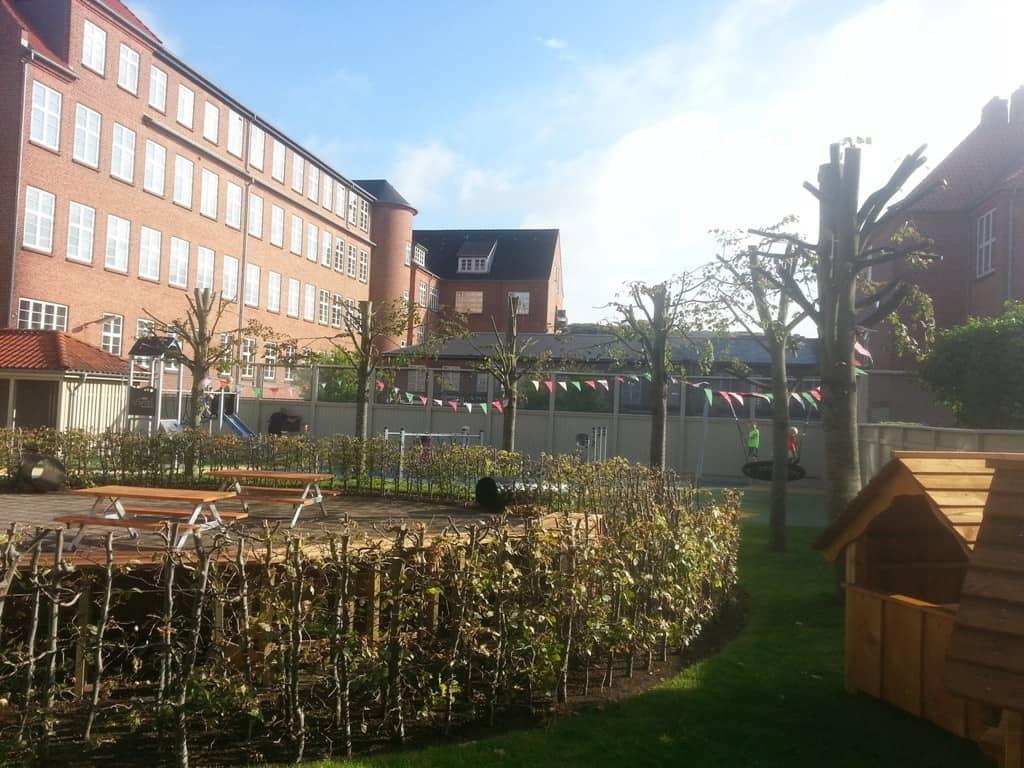 anlægsgartner-beskæring-af-træer-haveservice-træbeskæring-topkapper-anlægsgartner-Svaevende-haek-Kirstine-Seligmanns-Skole-Boernehave-Worsaaesgade-Vejle-sommer-2015-20150805_084210
