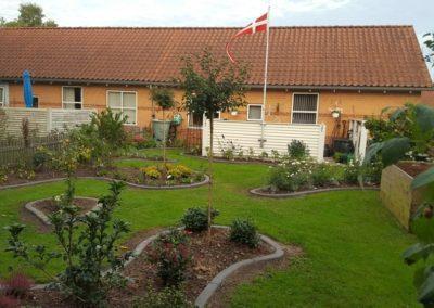 Brejning-Børkop-havedesign-planter-plantning-1-20160927_183539-1024x576