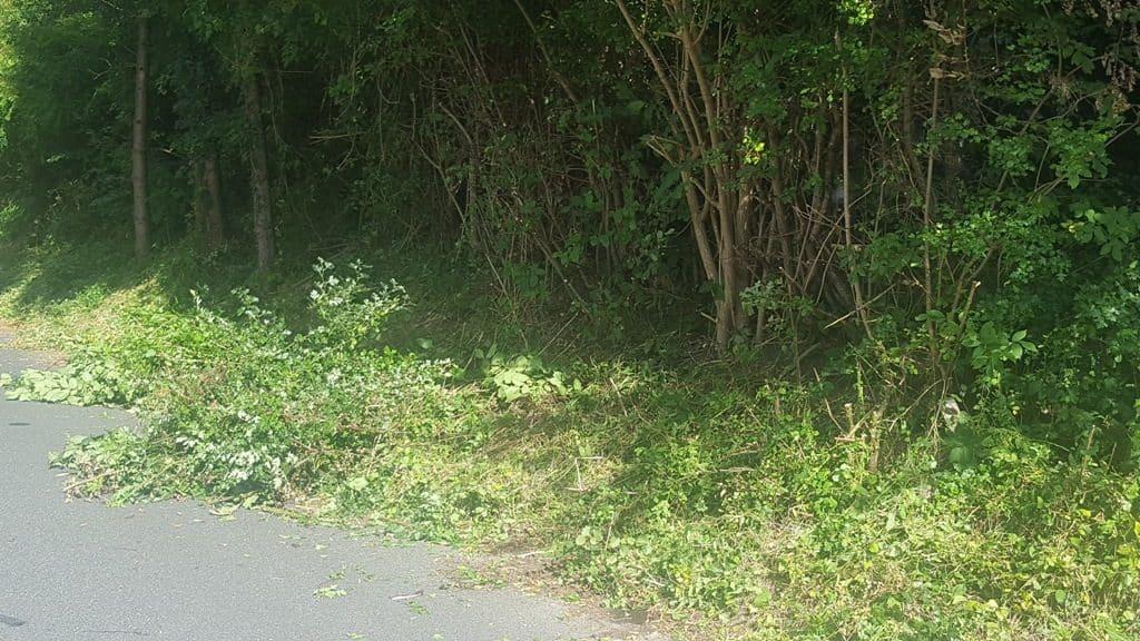 Haveservice-Hækkeklipning på kommunal anfordring i Stadionalle - Vejlevej i Kolding
