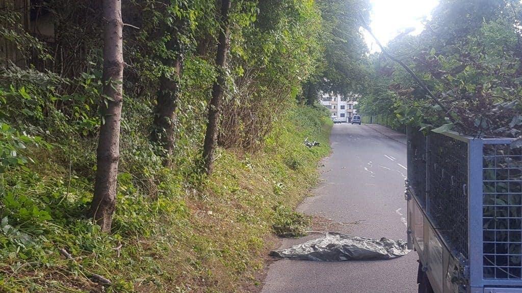 Hækkeklipning på kommunal anfordring i Stadionalle – Vejlevej i Kolding