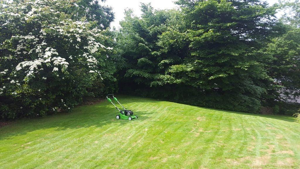 Græsklipning af privat græsplæne på Langagervej i Bredballe i Vejle