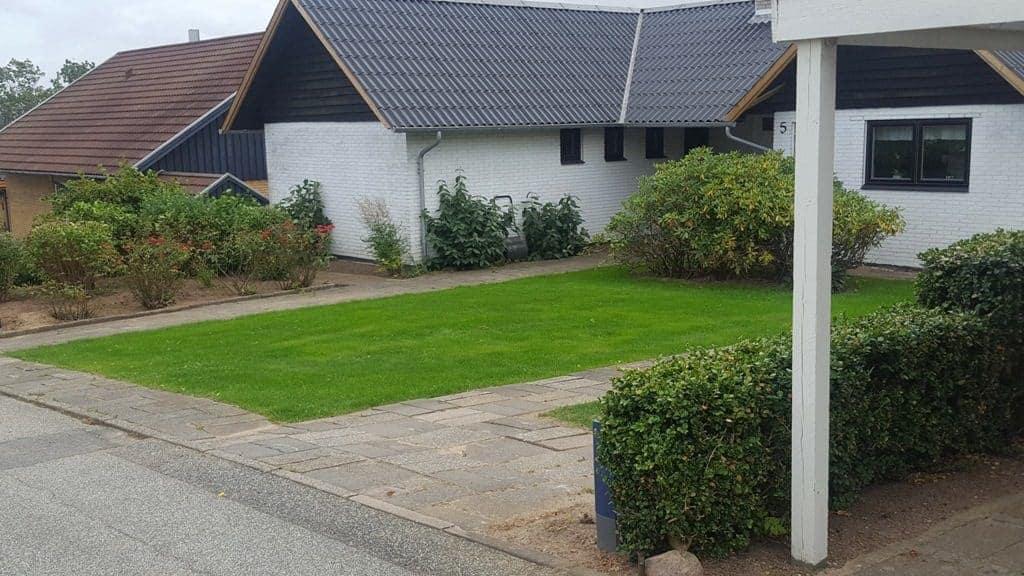 Græsplæne i Vejle – Ny græsplæne på Uhrhøj i Vejle