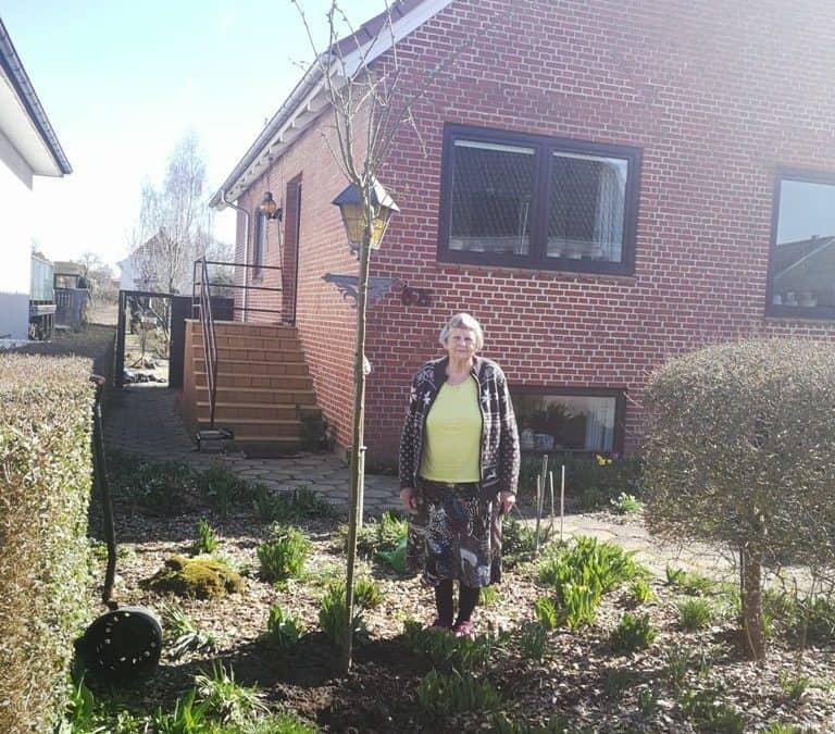 Guldregn i fødselsdagsgave til Fru Danø på Immervad i Kolding