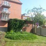 Svaevende-haek-Kirstine-Seligmanns-Skole-Boernehave-Worsaaesgade-Vejle-sommer-2015-20150714_163743