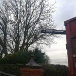 Vi har containeren med så vi kunne sagtes bortskaffe træet for træfældningen. men i dette tilfælde kan kunden selv bruge træet.