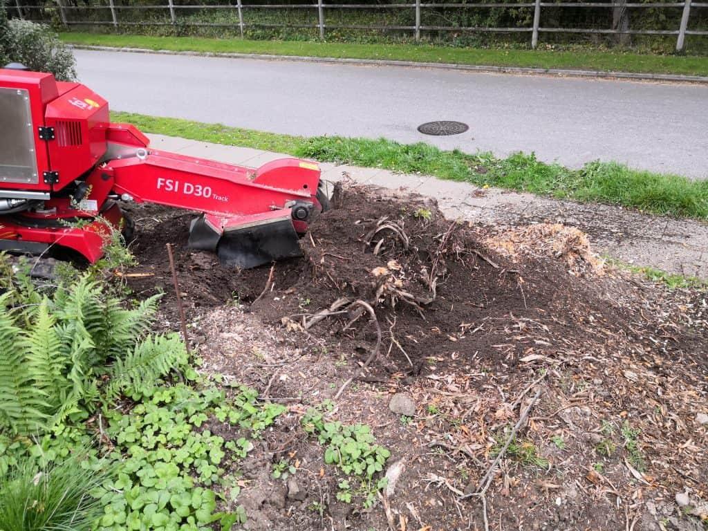 Stubfræsning rodfræsning stubfræser træstub rødder fredericia