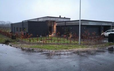 Plantning af hæk i Vejle